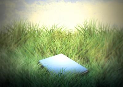 Bok i gräs