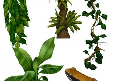 Växter koncept